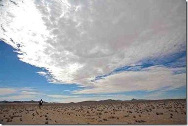 Trail of the Bushman