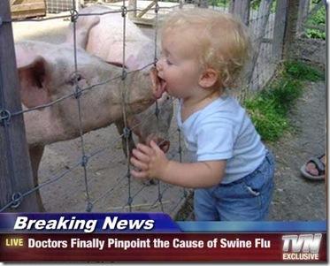 swine flu kid