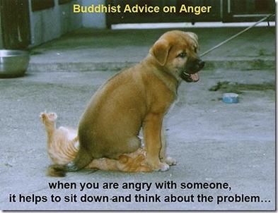 buddhist-advice-on-anger2