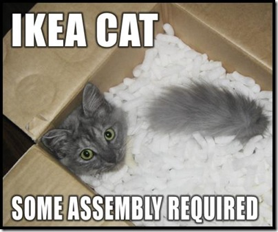 ikea-cat-some-assembly-required