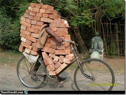 who needs a wheelbarrow