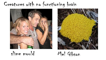 mel gibson slime mold