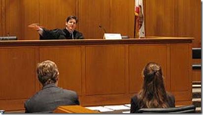 300px-American_judge