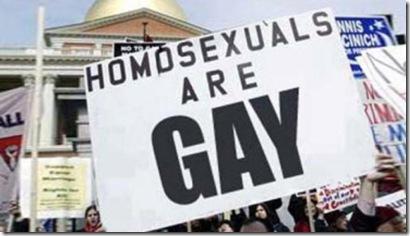 Homosexuals-are-gay (1)