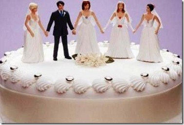 polygamy-1