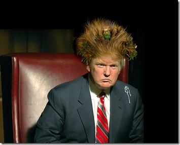 trump-hair1
