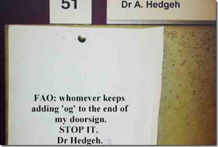 dr hedgeh